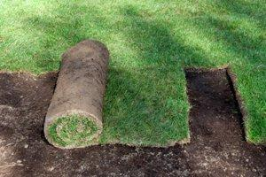 Install Synthetic Grass for Landscaping, Putting Greens, Play Areas, etc.