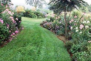 Grade or Reslope Grounds for Landscaping