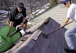 roof1.jpg (14044 bytes)
