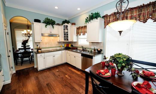 All New Property Preservation, LLC