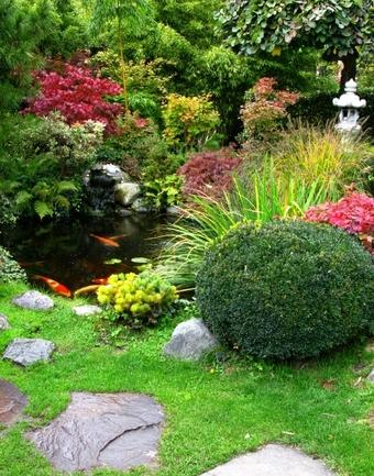 N&N Premium Lawn Care