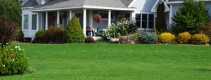 Mainstream Landscape Maintenance, LLC