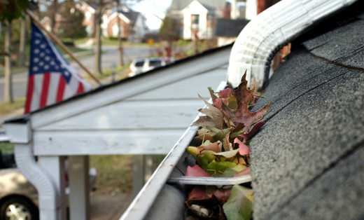 Advanced Gutter Leaf Guard