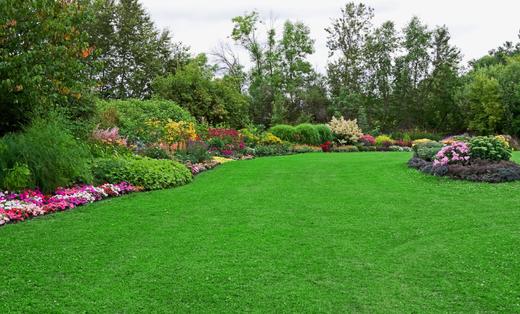Dedicated Turf Landscaping Llc